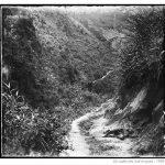 Đường sắt Vân Nam – Việt Nam (phần cuối)