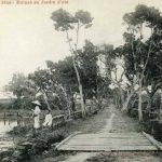 Huế Xưa – Vườn Cơ Hạ