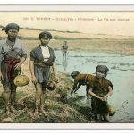 Bưu ảnh tô mầu – Đời sống sinh hoạt (2)