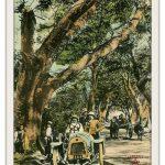 Bưu ảnh tô mầu – Phong cảnh và công trình (12)