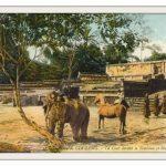 Bưu ảnh mầu – Lăng tẩm Huế