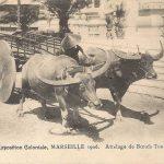 Triển lãm thuộc địa Marseille 1906 (4)
