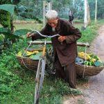 Nông sản an toàn và trái tim người Việt…