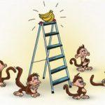 Con khỉ và quả chuối