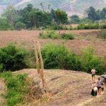 Đất tự khai hoang có được cấp giấy chứng nhận quyền sử dụng đất không?