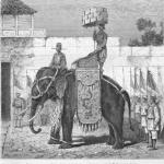 Huế Xưa – Tượng binh